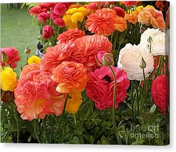 Garden Of Bloomingdale Dwarf Canvas Print by Kaye Menner
