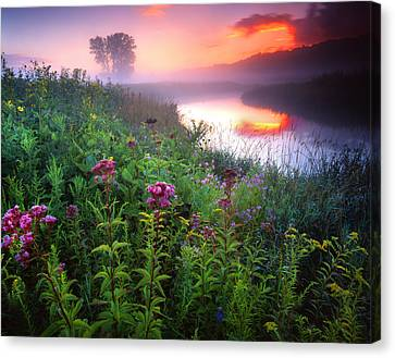Garden On The Creek Canvas Print