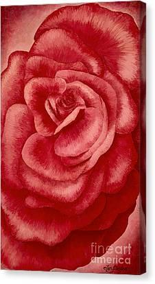 Garden Rose Canvas Print
