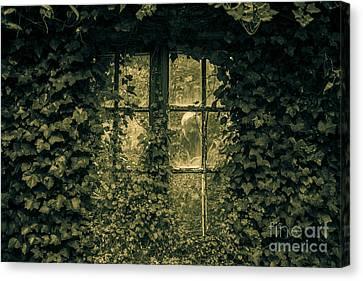 Garden Spirit Canvas Print