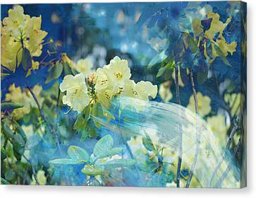 Garden Spirits Canvas Print by John Fish