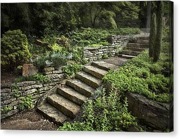 Garden Steps Canvas Print by Tom Mc Nemar