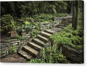 Greenery Canvas Print - Garden Steps by Tom Mc Nemar