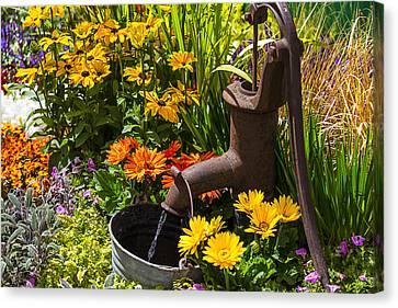 Garden Water Pump Canvas Print