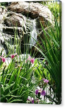 Garden Waterfall Canvas Print by Pattie Calfy