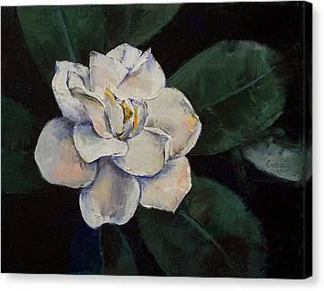 White Gardenia Canvas Print - Gardenia Oil Painting by Michael Creese