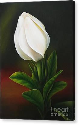 White Gardenia Canvas Print - Gardenia by Paula Ludovino