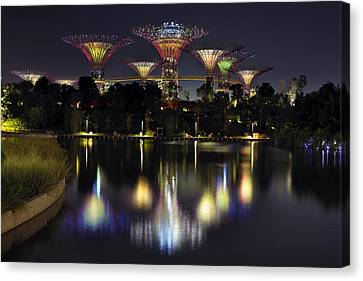 Gardens By The Bay Supertree Grove Canvas Print by David Gn