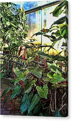 Gardens Canvas Print