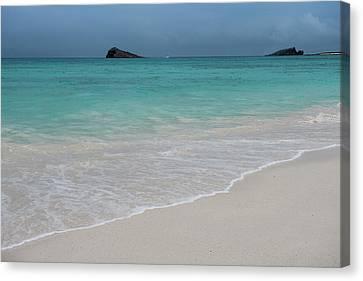 Gardner Bay, Espanola Island, Galapagos Canvas Print by Pete Oxford