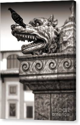 Gargoyle And Pidgeon - Sepia Canvas Print by Gregory Dyer