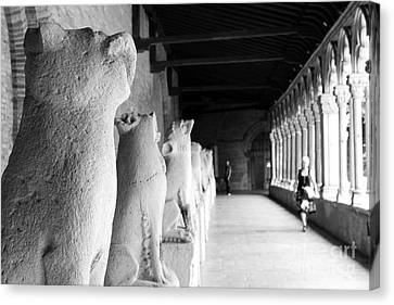 Canvas Print featuring the photograph Gargoyles by Cendrine Marrouat