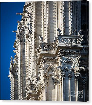 Gargoyles Canvas Print by Inge Johnsson