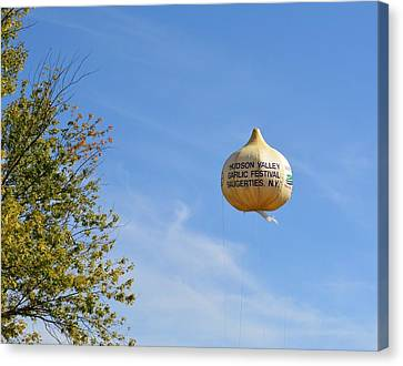 Garlic In The Air Canvas Print by Judy Genovese