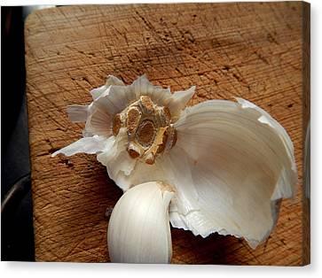 Canvas Print featuring the digital art Garlic Is Life by Aliceann Carlton
