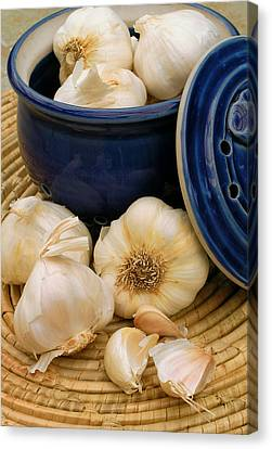 Garlic Canvas Print by James Temple
