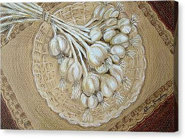 Canvas Print featuring the drawing Garlic by Patricia Januszkiewicz