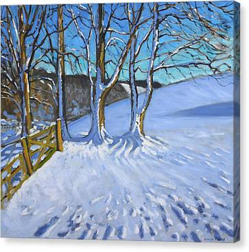 Winter In The Country Canvas Print - Gate And Trees Winter Dam Lane Derbyshire by Andrew Macara