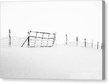 Gate In Snow Canvas Print by Anne Gilbert