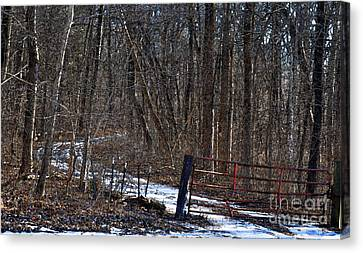 Gated Country Road Canvas Print