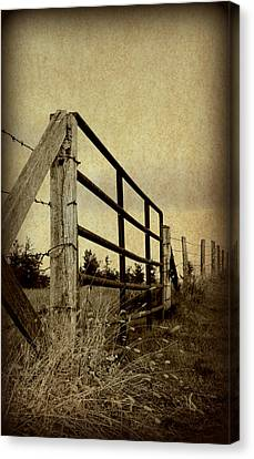 Gated Field Canvas Print