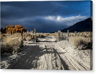Gate's Open Canvas Print by Cat Connor