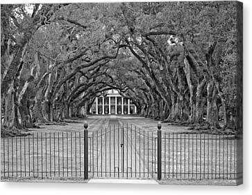 Gateway To The Old South Monochrome Canvas Print by Steve Harrington