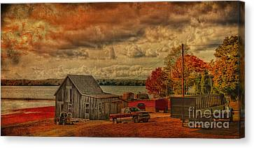 Canvas Print featuring the photograph Gathering Cranberries by Gina Cormier