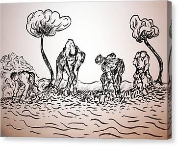 Gathering Potatoes Canvas Print by Paul Morgan