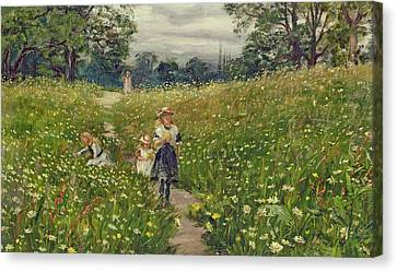 Country Lane Canvas Print - Gathering Wild Flowers  by Philip Richard Morris