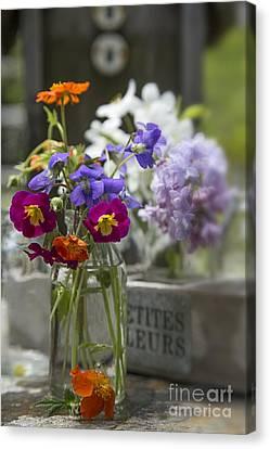 Gathering Wildflowers Canvas Print by Edward Fielding