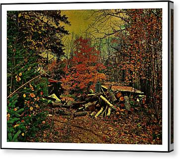 Gathering Wood For Winter  Canvas Print by Dianne  Lacourciere