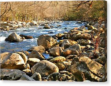 Gatlinberg River Canvas Print by Donald Williams