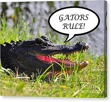 Gators Rule Greeting Card Canvas Print by Al Powell Photography USA