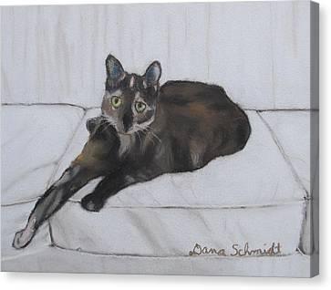 Gatsby The Cat Canvas Print