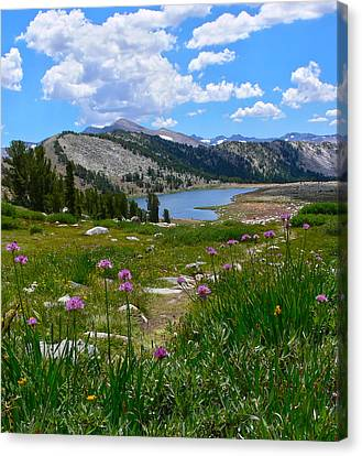 Gaylor Lakes And Wild Onions By Frank Lee Hawkins Canvas Print