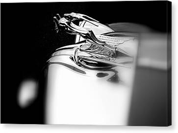 Gazelle Hood Ornament Canvas Print by Nick Kloepping