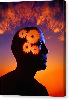 Gears Going In The Mind Canvas Print by Don Hammond