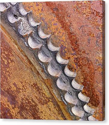 Gears Canvas Print by Susan Serna