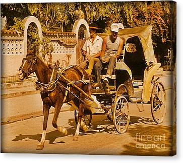 Gee Haw Canvas Print by John Malone
