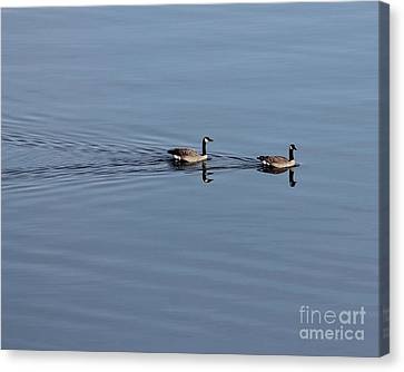 Geese Reflected Canvas Print by Leone Lund