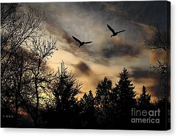 Canvas Print featuring the photograph Geese Silhouette by Marjorie Imbeau