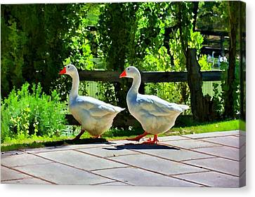 Canvas Print featuring the photograph Geese Strolling In The Garden by Tracie Kaska