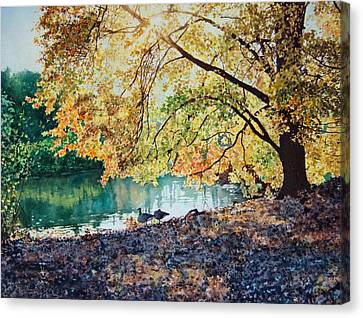 Geese Under A Tree Canvas Print by Ben Sapia