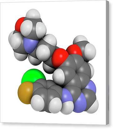 Gefinitib Cancer Drug Molecule Canvas Print by Molekuul