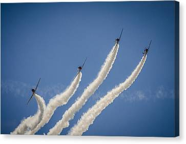 Geico Sky Typers 2 Canvas Print by Bradley Clay