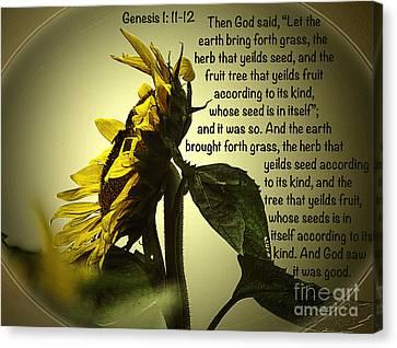 Genesis 1 11-12 Canvas Print by Donna Brown