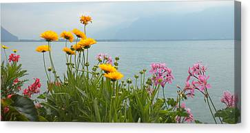 Geneva Flowers Canvas Print by Teresa Tilley