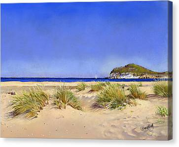 Genoveses Beach Canvas Print by Margaret Merry