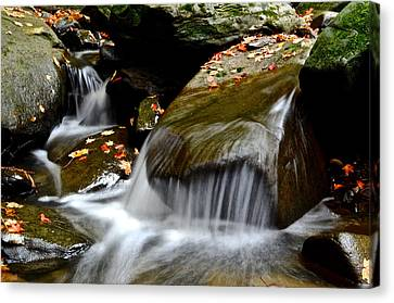 Gentle Falls Canvas Print by Frozen in Time Fine Art Photography